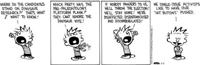 Calvin and Hobbs Single Issue Voter
